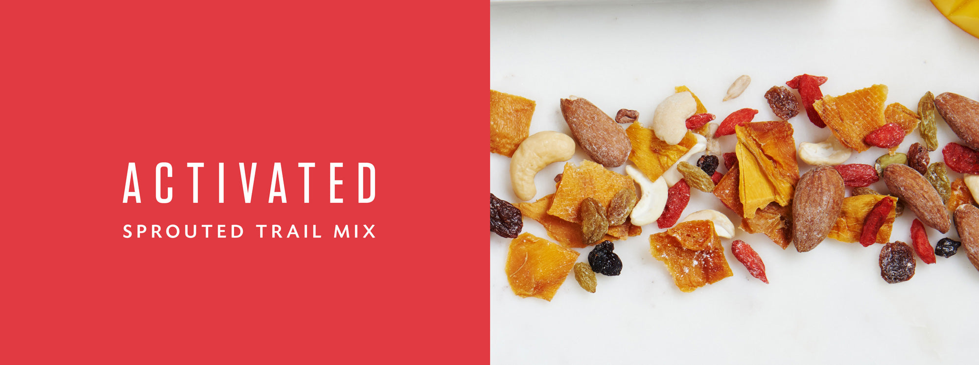 Activated Sprouted Trail Mix Living Intentions Spicy Mango Healthy Snack Food