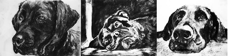 custom charcoal dog drawing from photo