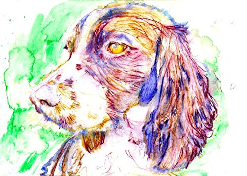Springer Spaniel Dog Wall Art Print, Dog Memorial Art, Spaniel Owner Gift, Dog Picture, Colorful Dog Watercolor Painting Decor Choice Of Sizes, Hand Signed By Pet Portrait Artist Oscar Jetson - Dog portraits by Oscar Jetson
