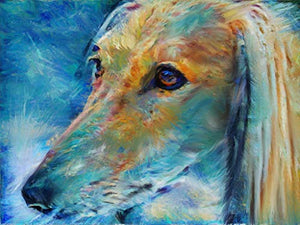 Afghan Hound Wall Art Decor, Dog Memorial, Afghan Hound Picture Gift Choice of Sizes Hand Signed by Dog Portrait Artist Oscar Jetson. - Dog portraits by Oscar Jetson