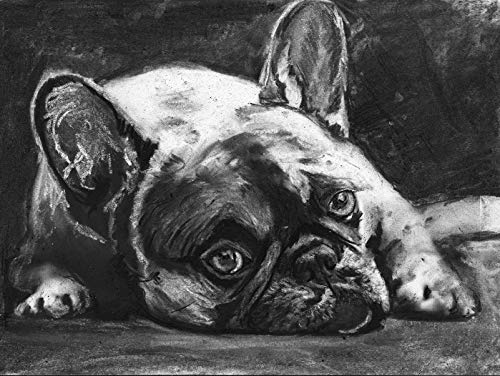 French Bulldog Wall Art Print, Black And White Frenchie Owner Gift, Frenchy Memorial Artwork, Charcoal Dog Drawing Print Choice Of Sizes, Hand Signed By Pet Portrait Artist Oscar Jetson - Dog portraits by Oscar Jetson