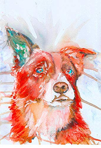 Border Collie Wall Art Print, Colorful Abstract Collie Artwork, Dog Owner Gift, Dog Memorial Picture, Pet Nursery Art, Choice Of Sizes Hand Signed By Pet Portrait Artist Oscar Jetson - Dog portraits by Oscar Jetson