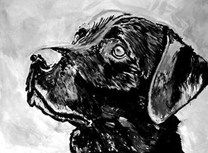 Labrador Retriever Dog Wall Art Print, Black Lab Artwork, Lab Owner Gift, Lab Dog Art, Black And White Decor, Labrador Dog Memorial Painting Picture Choice Of Sizes Hand Signed By Artist Oscar Jetson - Dog portraits by Oscar Jetson