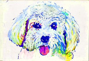 Bichon Frise Art,, Abstract Bichon Frise Painting, Colorful Bichon Frise Owner Gift, Bichon Frise Mom Painting Print, Choice of size Hand Signed by Oscar Jetson - Dog portraits by Oscar Jetson
