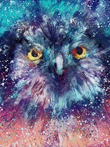 Abstract Blue Owl Wall Art Decor, Bird Picture, Woodland Wildlife. Tawny Owl Bird Nature Lover Picture Gift Choice of Sizes Hand Signed by Animal Artist Oscar Jetson. - Dog portraits by Oscar Jetson