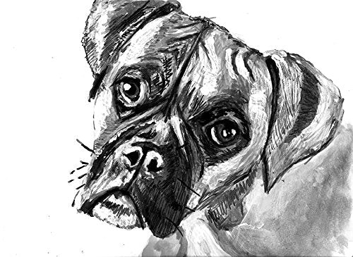 Cute Grey Boxer Dog Art, Boxer Dog Owner Gift, Boxer Dog Wall Artwork, Black and White Boxer Dog Wall Art Print, Boxer Dog mum Decor Hand Signed by Oscar Jetson - Dog portraits by Oscar Jetson