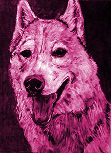 Husky Lover Gift, Husky Art Print, Colorful Siberian Husky Art, Husky Mom, Pink Husky Drawing Print Signed by Oscar Jetson - Dog portraits by Oscar Jetson