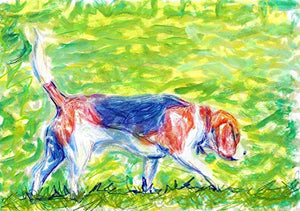 Beagle Wall Art Print, Colorful Beagle Decor, Nursery Art, Beagle Owner Memorial Gift, Colorful Beagle Artwork Hand Signed By Dog Portrait Artist Oscar Jetson Choice Of Sizes. - Dog portraits by Oscar Jetson