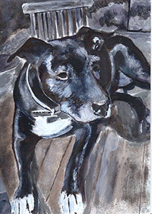 Staffordshire Bull Terrier Art, Staffy owner Gift, Black Staffie Wall Art, Dog Home Decor hand signed by Oscar Jetson - Dog portraits by Oscar Jetson