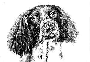 English Springer Spaniel Painting Wall Art Print, Springer Spaniel Dog Art, Springer Owner Gift,Black White Dog Wall Art Print, Working Springer Gift - Dog portraits by Oscar Jetson