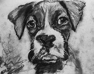 Boxer Puppy Wall Art Decor, Charcoal Drawing Print, Boxer Dog Owner Gift, Boxer Memorial, Black And White Wall Hanging, Hand Signed By Oscar Jetson Choice Of Sizes 8x10, 11x14, 12x16 - Dog portraits by Oscar Jetson