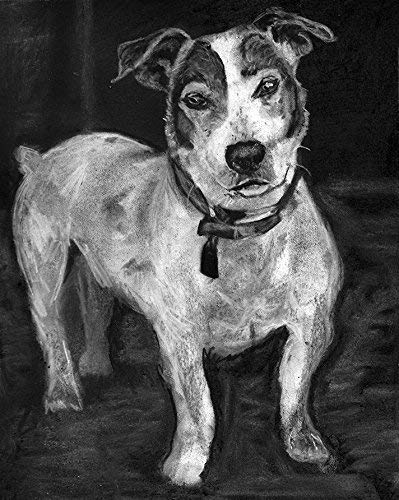 Jack Russell Wall Art Print, JRT Charcoal Drawing, Dog Owner Gift, Jack Russell Memorial, Dog Nursery Decor Art Print, Black and White Dog Picture Hand Signed By Pet Portrait Artist Oscar Jetson - Dog portraits by Oscar Jetson