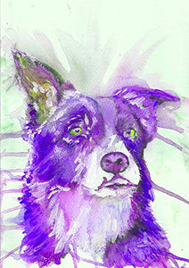 Border Collie Wall Art Print, Colorful Purple Collie Dog Artwork, Collie Dog Owner Gift, Welsh Sheepdog Dog Wall Art Print, Collie Dog Watercolor Artwork Signed by Oscar Jetson. - Dog portraits by Oscar Jetson