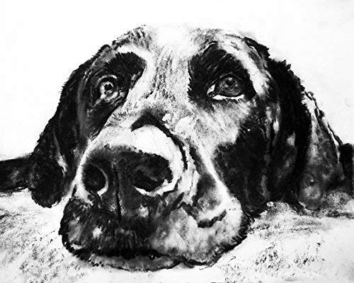 Black Labrador Dog Wall Art Print, Lab Charcoal Drawing Artwork, Dog Owner Gift, Lab Dog Memorial, Dog Picture Decor Choice Of Sizes Hand Signed By Dog Artist Oscar Jetson - Dog portraits by Oscar Jetson