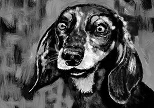 Dachshund Art Print, Doxie Gift Idea, Cute Dachshund Dog Artwork, Dachshund Owner Gift, Black and White Dog Wall Art Print, Dog Home Decor Hand Signed by Oscar Jetson - Dog portraits by Oscar Jetson