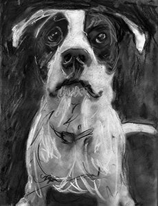 Staffordshire Bull Terrier Art, Staffy Gift, Black and white American Staffy Wall Art Print, Dog Home Decor hand signed by Oscar Jetson - Dog portraits by Oscar Jetson
