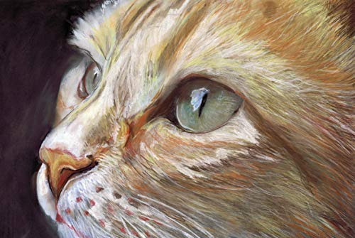 Ginger Cat Art Print, Cat Pastel Painting Cat Decor, Cat Mom, Feline Lover Gift, Kitten Wall Art Print, Orange Tabby Cat Decor hand signed - Dog portraits by Oscar Jetson