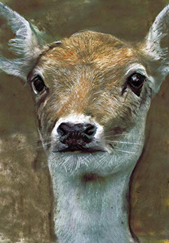 Deer Art Print, Choice Of Sizes Hand Signed Deer Picture, Brown Animal Deer Head, Forest Decor, Boy Nursery Wall Art, Woodland, Hunting, Forest Wall Art, Hand Signed Woodland Art Print by Oscar Jetson - Dog portraits by Oscar Jetson