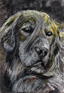 Golden Retriever Wall Art Print, Charcoal Golden Retriever Owner Gift, Goldie Mom, Golden Retriever Drawing, Golden Retriever Wall Art Print, Dog Artwork hand signed by Oscar Jetson - Dog portraits by Oscar Jetson
