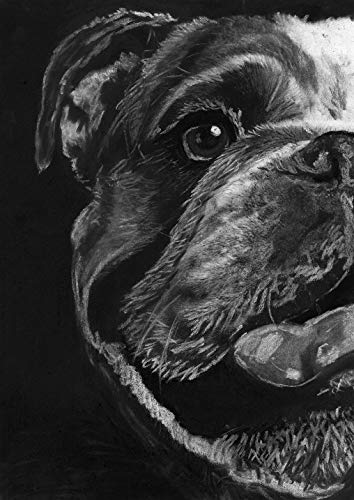 English Bulldog Wall Art Print, Dog Nursery Decor, Bulldog Owner Gift, English Bulldog Memorial, Black and White Drawing Hand Signed By Pet portrait Artist Oscar Jetson Choice Of Sizes - Dog portraits by Oscar Jetson