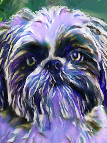 Abstract Shih Tzu Wall Art Decor, Dog Memorial, Abstract Dog Picture Gift Choice of Sizes Hand Signed by Dog Portrait Artist Oscar Jetson. - Dog portraits by Oscar Jetson