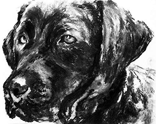 Labrador Charcoal Wall Art, Black Lab Art, Labrador Dog Owner Gift, Lab Memorial Gift, Retriever Decor Choice Of Sizes Hand Signed By Pet Portrait Artist Oscar Jetson - Dog portraits by Oscar Jetson
