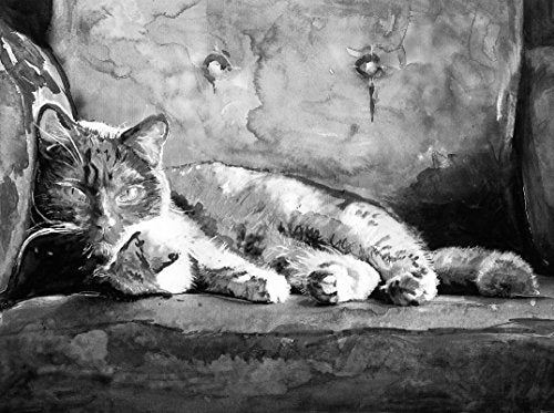 Black and White Cat Art, Tabby Cat Painting Watercolor Cat Wall Art Print, Feline Art, Cat Owner Gift, Kitten Wall Art Print, Cat Wall Hanging Gift - Dog portraits by Oscar Jetson