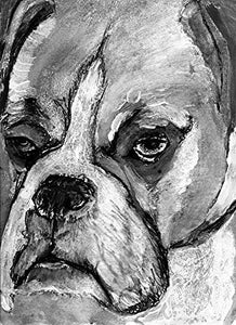 Boxer Dog Wall Art Print, Black and White Boxer Owner Gift, Boxer Mom Artwork, Choice of Size Hand Signed by Oscar Jetson. - Dog portraits by Oscar Jetson