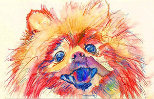 Pomeranian Pop Art, Dog Nursery Art, Pomeranian Dog Art Print, Gift for Pomeranian Owner, Pomeranian Mom, Colorful Orange Pomeranian Art, Pomeranian Decor, Colorful Dog Watercolor - Dog portraits by Oscar Jetson
