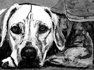 Weimaraner Dog Wall Art Print, Black and White Painting Print Weim Artwork, Pet Decor Hand Signed by Artist Oscar Jetson. - Dog portraits by Oscar Jetson
