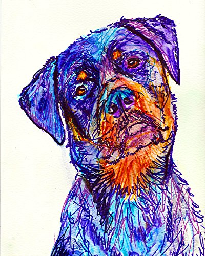 Rottweiler Line Art Print, Colorful Rottie Wall Art , Gift for Rottweiler Owner, Rottie Dog Art Print, Colorful Rottweiler Wall Hanging - Dog portraits by Oscar Jetson