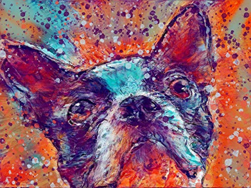 Boston Bulldog Terrier Dog Wall Art Decor, American Gentleman Dog Memorial, Abstract Dog Picture Gift Choice of Sizes Hand Signed by Dog Portrait Artist Oscar Jetson. - Dog portraits by Oscar Jetson
