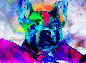 Boston Terrier Art, Boston Mom Gift, Modern Boston Bull Terrier Nursery Art, Boston Terrier Owner Gift, Dog Art Print, Colorful Boston Terrier Painting signed by Oscar Jetson - Dog portraits by Oscar Jetson