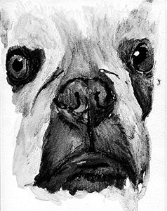 French Bulldog Watercolour Art, Black and White Frenchie Artwork, French Bull Owner Gift, Frenchie Dog Artwork, Frenchy Decor - Dog portraits by Oscar Jetson