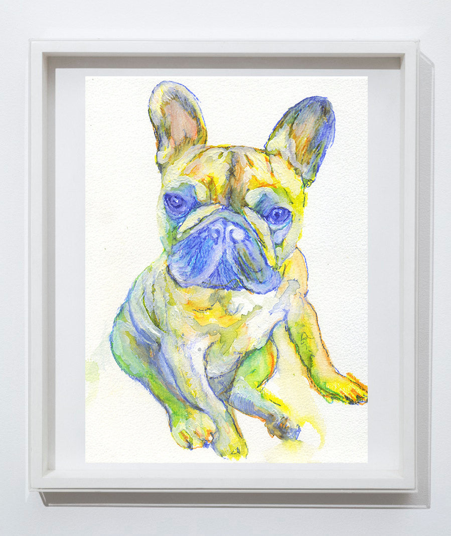 French bulldog puppy watercolor  wall art print Blue and yellow french bulldog print - Dog portraits by Oscar Jetson