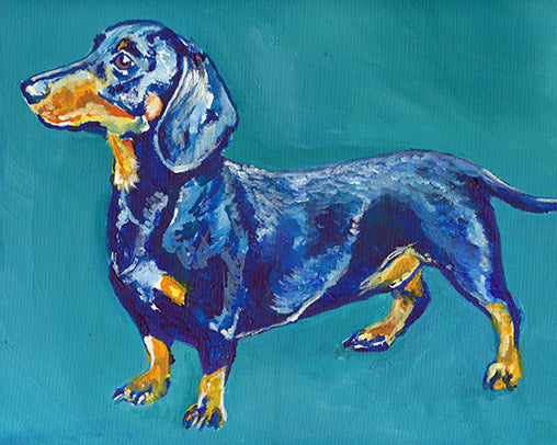 Dachshund Wall Art Print, Dachshund owner gift, Colorful Dachshund print, Doxie wall art Print ,watercolor Dog art print, Dachshund Dog art , Weiner art print - Dog portraits by Oscar Jetson