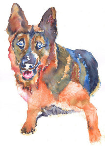German shepherd Alsatian dog Painting watercolor Blue Orange Alsatian art print - Dog portraits by Oscar Jetson