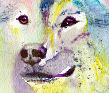 Load image into Gallery viewer, Husky Dog watercolor,Gift for Husky owner,colorful Sibe Husky painting,Blue Siberian Husky,colorful dog art, Dog portrait dog wall art print - Dog portraits by Oscar Jetson