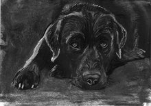 Load image into Gallery viewer, Black lab wall art, Black Lab print, Lab mom gift, Labrador retriever, Lab lover,Lab art print, Labrador decor, Black Lab gift idea - Dog portraits by Oscar Jetson
