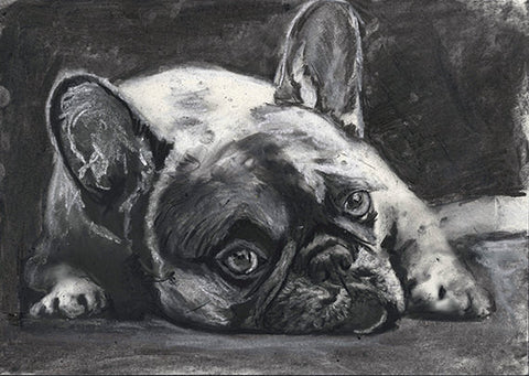 Frenchie, charcoal art print, Black French Bulldog,Gift for French Bulldog owner,Frenchie decor,Dog memorial,French Bulldog drawing  print - Dog portraits by Oscar Jetson