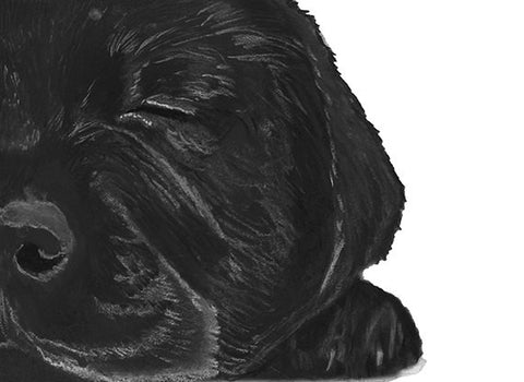 Black lab owner gift,Labrador puppy art print,dog loss gift,black labgift idea,lab wall art,dog lover gift,black lab art print - Dog portraits by Oscar Jetson - 1