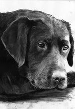 Load image into Gallery viewer, Black lab print, Black Lab wall art, Lab drawing,Lab mom gift, Labrador retriever,Lab art print, Labrador decor, Black Lab gift idea - Dog portraits by Oscar Jetson