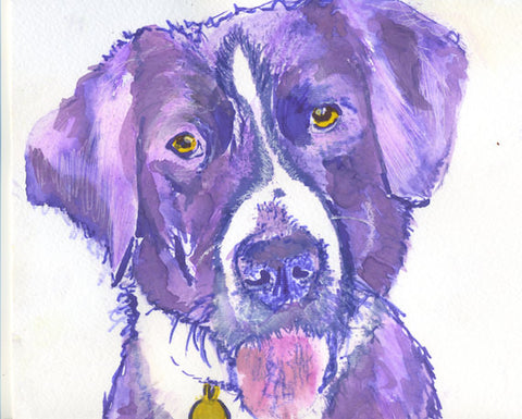 Collie dog art print in Purple, giclee art print hand signed by dog artist Oscar Jetson - Dog portraits by Oscar Jetson