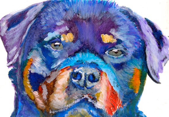Rottweiler dog painting print, Colourful Rottie Print, Dog painting, Rottweiler wall art, Colorful Dog picture, gift for Rottweiler owner - Dog portraits by Oscar Jetson