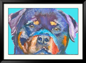 Rottweiler pet Portrait Colourful blue Print from an original Acrylic and Watercolour Painting, Rottweiler by Oscar Jetson 8.3 x 11.7 inches - Dog portraits by Oscar Jetson