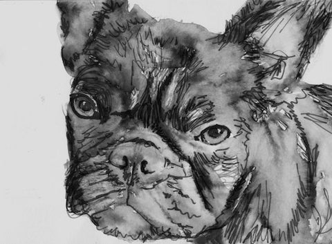 French Bulldog print from Painting, Modern wall art Black and white Print of Original Art 8x10, 5x7 or larger -french bulldog gift idea - Dog portraits by Oscar Jetson