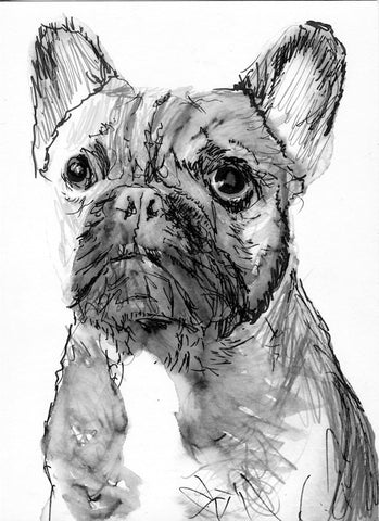 French Bulldog watercolor  print, Black and White French Bulldog Print, French Bulldog Painting, dog painting, gift for french bulldog owner - Dog portraits by Oscar Jetson