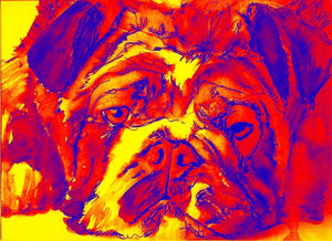British Bulldog Giclee art print Modern yellow red blue wall art Print of Original Watercolor painting gift idea signed - Dog portraits by Oscar Jetson
