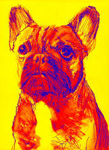 Load image into Gallery viewer, French Bulldog art print dog painting Giclee Print colorful modern art French Bulldog gift idea frenchie painting french bulldog print - Dog portraits by Oscar Jetson