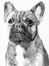 Load image into Gallery viewer, French Bulldog decor, art Print,  Frenchie Dog Art, french bulldog, black and white, dog loss gift, frenchie decor, french bulldog wall art - Dog portraits by Oscar Jetson